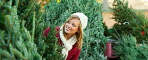 mountain-pines-christmas-tree-farm-header